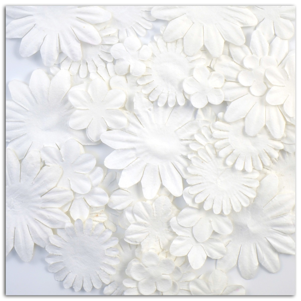 SORTIDO 75 FLORES MIX SHAPES WHITE AA30