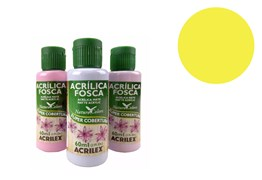 TINTA ACRILICA 60ML NATURE COLORS AMARELO LIM. 03560504