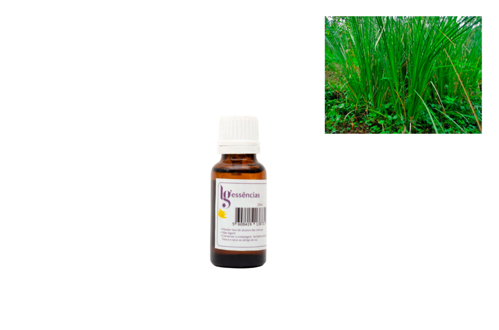 ESSENCIA 20ML VETIVER