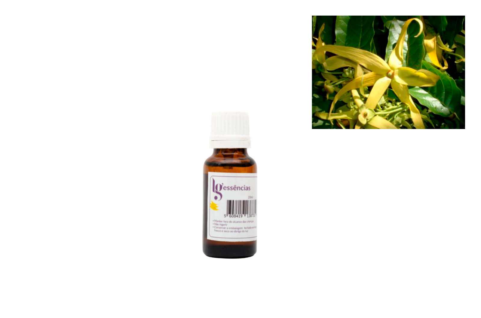 ESSENCIA 20ML YLANG YLANG