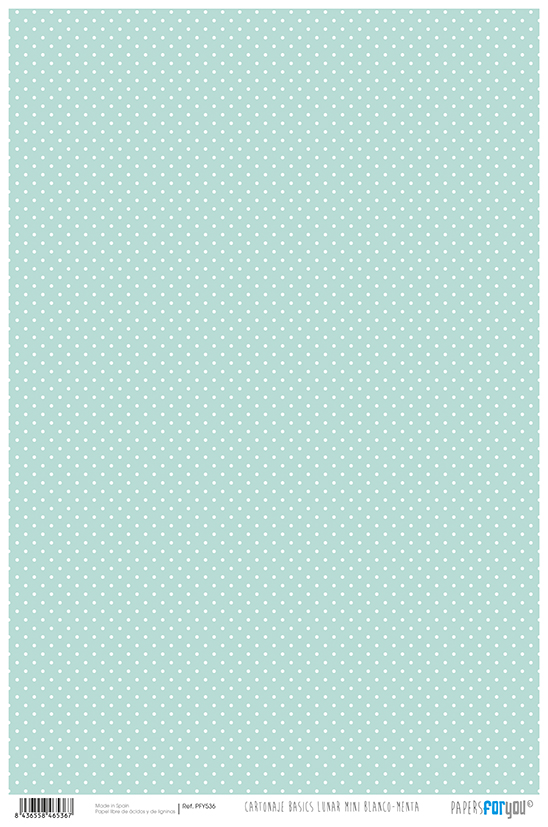 CARDBOARD PAPER 32X48.3CM DOT MINI WHITE / MINT PFY-536