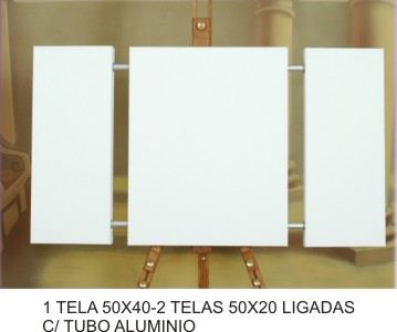1 CANVAS 50x40 - 2 CANVASS 50x20