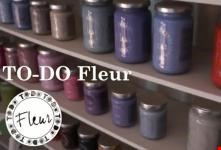 TO-DO FLEUR Paint